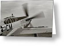 P51 Mustang Takeoff Ready Greeting Card by M K  Miller