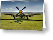 P51d Mustang Hdr Greeting Card