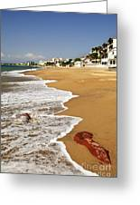 Pacific Coast Of Mexico Greeting Card