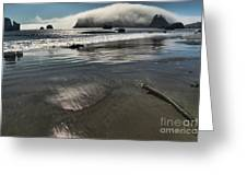 Pacific Fog Greeting Card by Adam Jewell