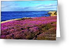 Pacific Grove California Coast Greeting Card