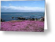 Pacific Grove California Greeting Card