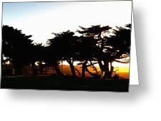 Pacific Grove Golf Links 19902 Greeting Card