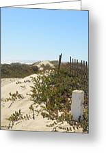 Pacific Pathway Greeting Card