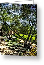 Pacifica Courtyard Greeting Card