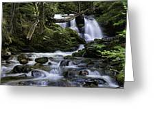 Packer Falls And Creek Greeting Card