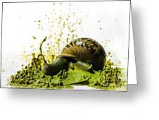 Paint Sculpture And Snail 2 Greeting Card