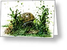Paint Sculpture And Snail 3 Greeting Card