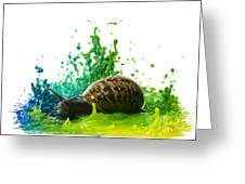 Paint Sculpture And Snail 4 Greeting Card