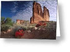 Paintbrush And The Organ Rock Greeting Card by Tim Fitzharris