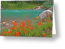 Paintbrush By Bow River In Banff Np-ab Greeting Card