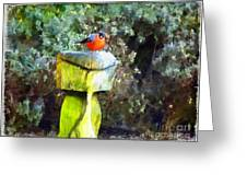 Painted Bullfinch S2 Greeting Card