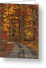 Painted Autumn Country Roads Greeting Card