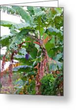 Painted Banana Plant Greeting Card