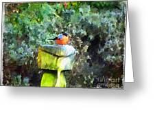 Painted Bullfinch S1 Greeting Card
