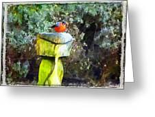 Painted Bullfinch Trio Greeting Card