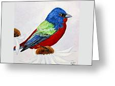 Painted Bunted Greeting Card
