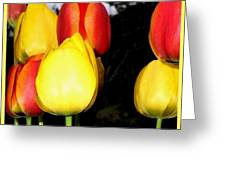Painted Country Tulips Greeting Card