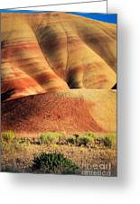 Painted Hills And Grassland Greeting Card