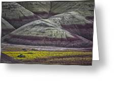 Painted Hills Bloom Greeting Card