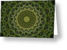Painted Kaleidoscope 11 Greeting Card