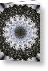 Painted Kaleidoscope 16 Greeting Card