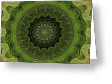Painted Kaleidoscope 8 Greeting Card