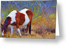 Painted Marsh Mare Greeting Card