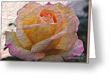 Painted Paper Rose Greeting Card