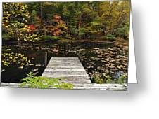 Painted Pond Greeting Card