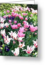 Painted Spring Exhibit Greeting Card