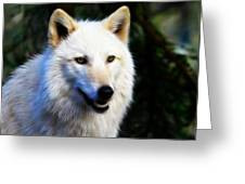 Painted White Wolf Greeting Card