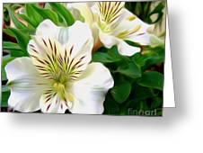 Painterly Alstroemeria Greeting Card