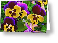 Painterly Purple Pansy Greeting Card