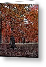 Painterly Style Autumn Trees Greeting Card