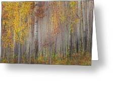 Painting Of Trees In A Forest In Autumn Greeting Card