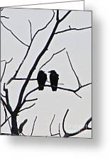 Pair Of Birds In Black Greeting Card