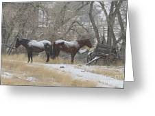 Pair Of Horses In A Snow Storm   #0559 Greeting Card