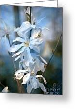 Pale Blue Greeting Card