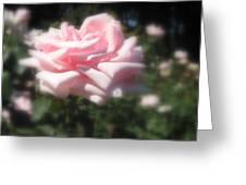 Pale Pink Rose I Greeting Card