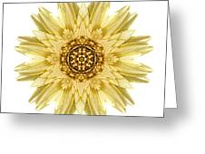 Pale Yellow Gerbera Daisy I Flower Mandala White Greeting Card