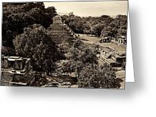 Palenque From The Jungle Panorama Sepia Greeting Card