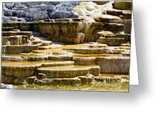 Palette Spring 2 Yellowstone National Park Wy Greeting Card