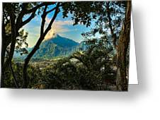 Pali Lookout For Puu Alii Greeting Card