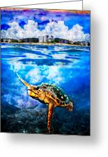 Palm Beach Under And Over Greeting Card