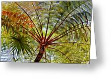 Palm Canopy Greeting Card