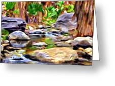 Palm Canyon Trail Greeting Card