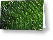 Palm Crosshatch Greeting Card