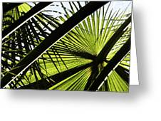 La Palm 3  Greeting Card