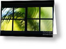 Palm In A Window Greeting Card